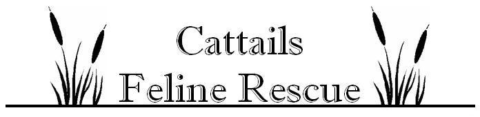 Cattails Feline Rescue Logo